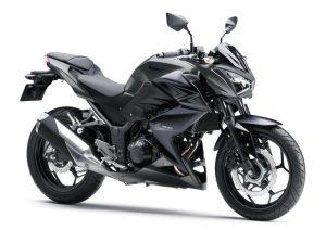 Pot echappement Kawasaki Z 300 ABS (2015 - 16)