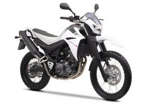Pot echappement Yamaha XT 660 R (2004 - 16)