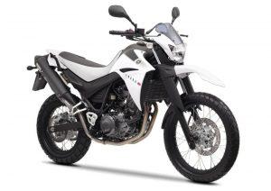 Pot echappement Yamaha XT 660 R (2004 - 16)