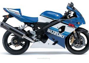 Pot echappement Suzuki GSX R 750X Anniversary (2005)
