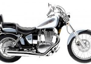 Pot echappement Suzuki LS 650 P Savage (2000 - 02)