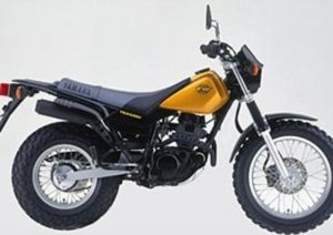 Pot echappement Yamaha TW 125