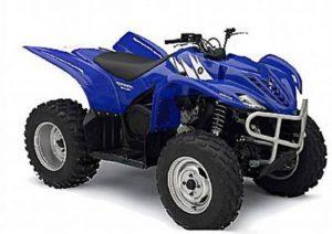 Pot echappement Yamaha Wolverine 450