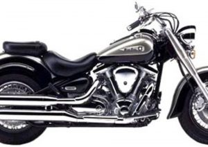 Pot echappement Yamaha XVS 1600 Wild Star