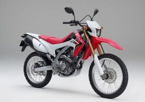 Pot echappement Honda CRF 250 L (2012 - 13)