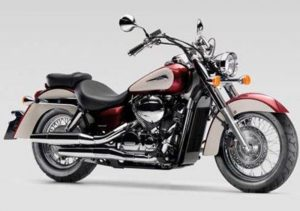 Pot echappement Honda VT 750 Shadow Classic